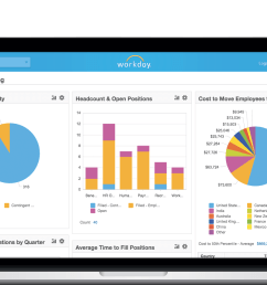 workday hcm interface with intuitive graphs [ 1619 x 935 Pixel ]