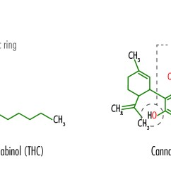 the structural formulas of tetrahydrocannabinol thc and cannabidiol cbd including the location [ 2434 x 1097 Pixel ]