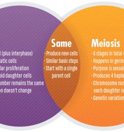 meiosis venn diagram [ 1424 x 862 Pixel ]
