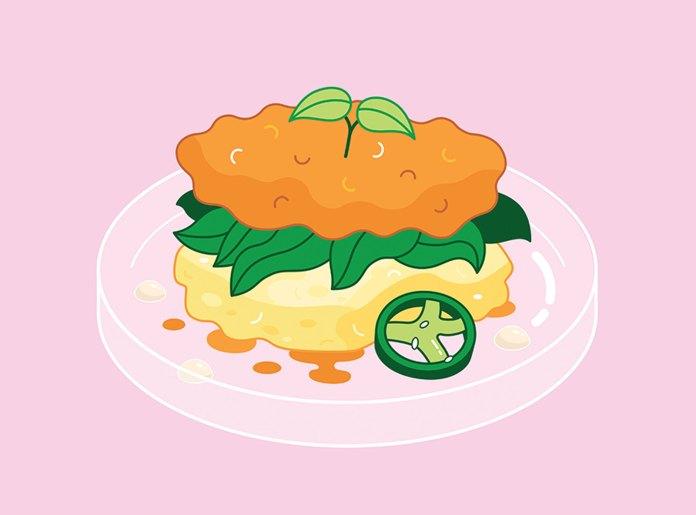 Illustration of plate of food