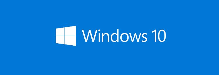 Windows 10 Horizontal Logo