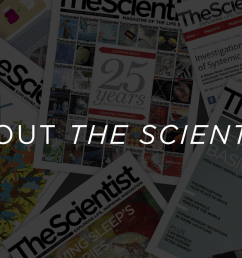 the scientist is the magazine for life science professionals a publication dedicated to covering a wide range of topics central to the study of cell and  [ 1800 x 720 Pixel ]