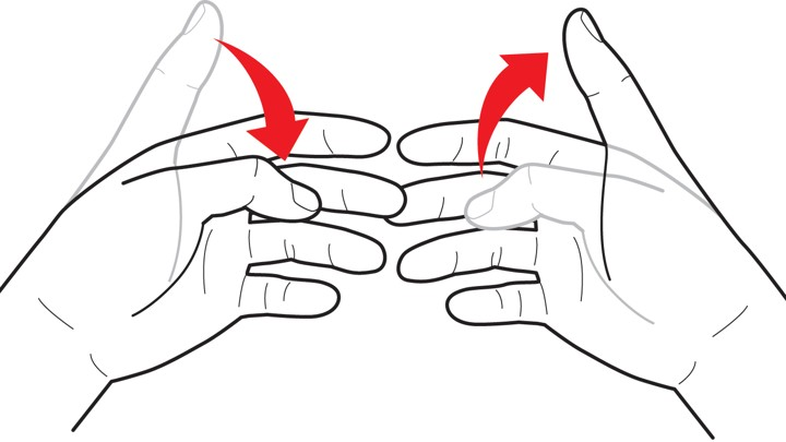 the evolution of hand