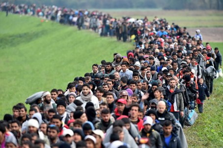 Image result for photos migrants