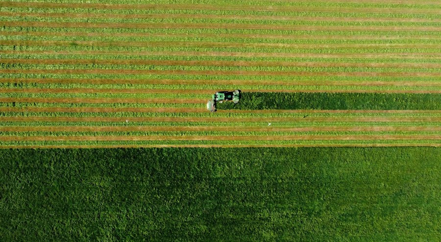 An aerial view of a farmer cutting grass in rows with a tractor