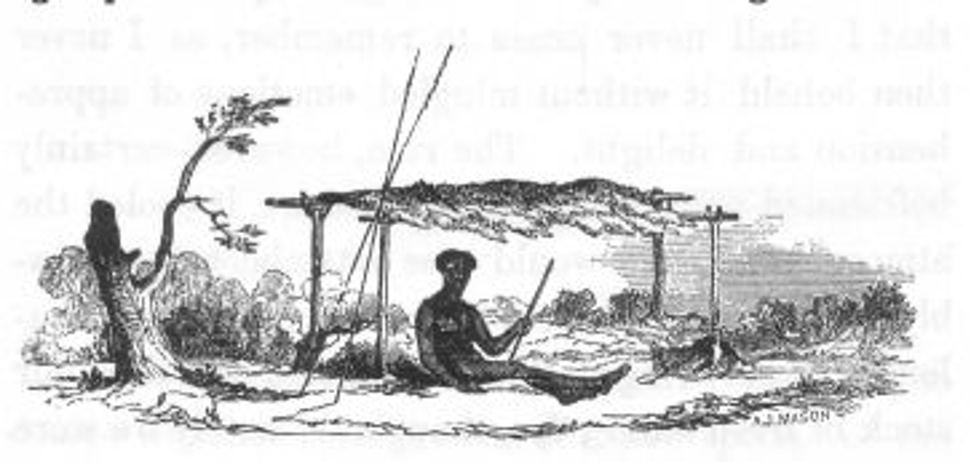 Friday essay: on listening to new national storytellers