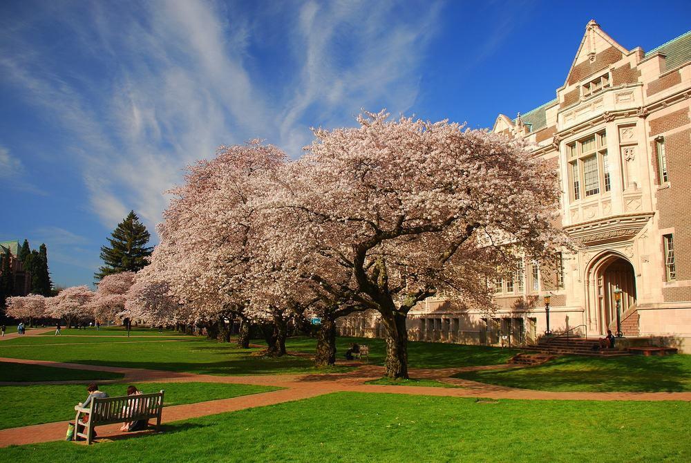 Campus de la Universidad de Washington, Seattle
