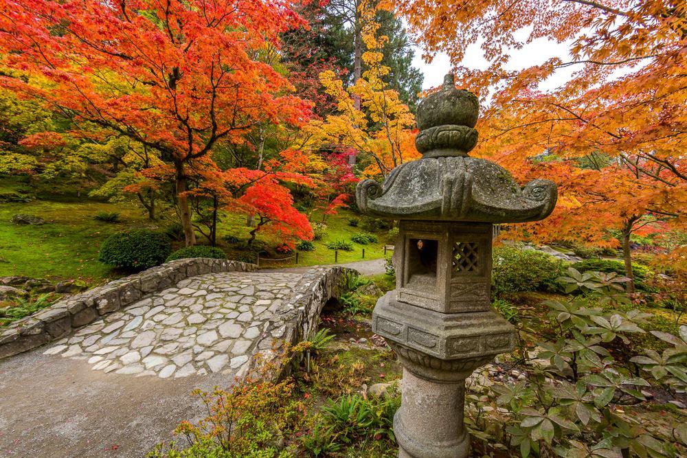 Jardín japonés de Seattle