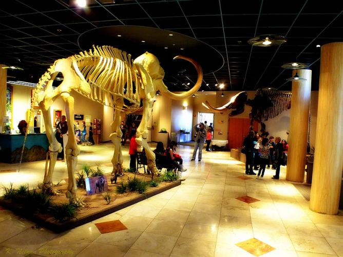 10 MustVisit Museums  Galleries In Mesa Arizona