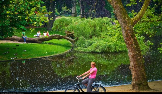 The Most Beautiful Parks In Amsterdam