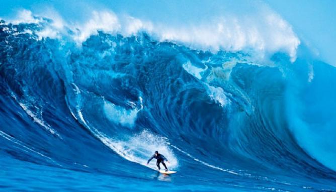 All Over La Jolla and Waimea Bay Surfin USA