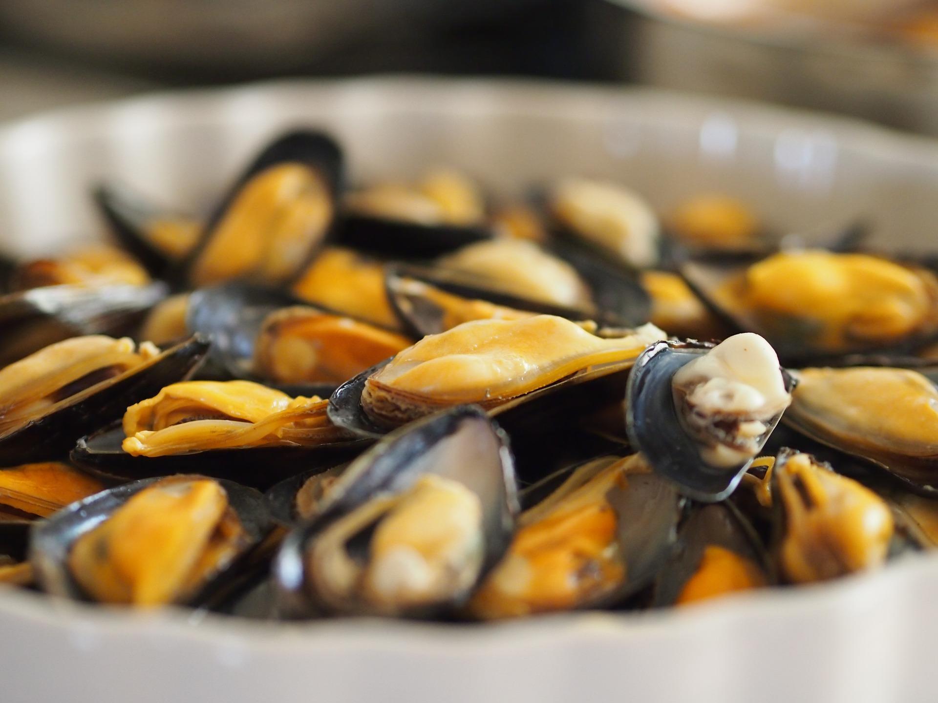 The 10 Best Restaurants In Kotor Montenegro