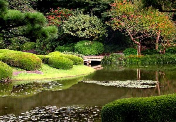6 beautiful gardens
