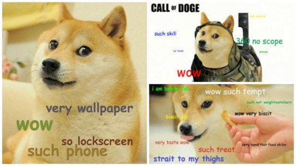 A Brief History Of The Doge Meme