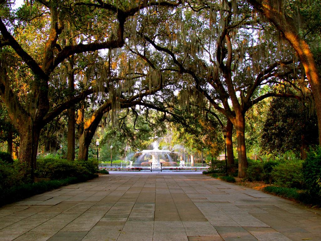 Savannah   © Jeff Gunn/Flickr