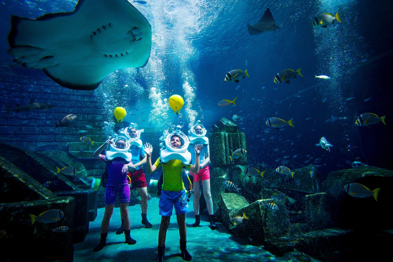 A Guide To Dubais Underwater World