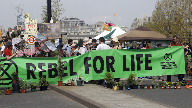 The Daily Mail reader's guide to Extinction Rebellion