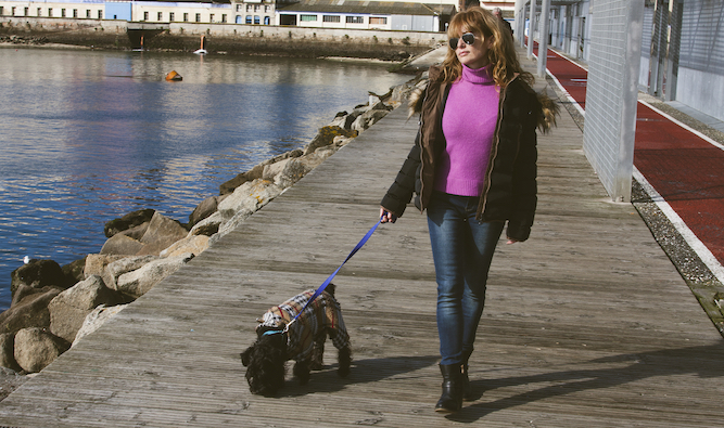 Humans more excited for walkies than dogs