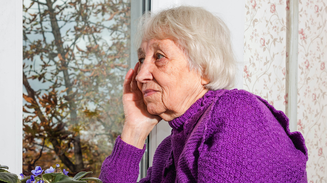 Family starts new Christmas tradition of staring at Nan through window