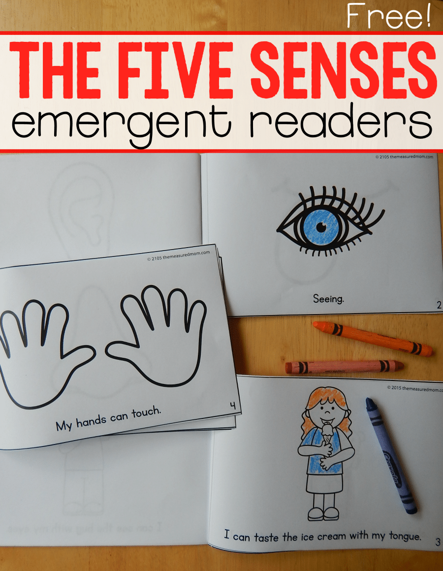 hight resolution of Five senses Color Me Readers - The Measured Mom