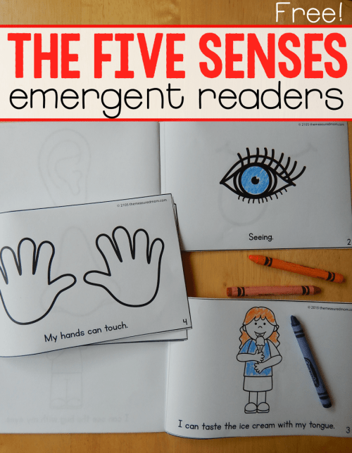 small resolution of Five senses Color Me Readers - The Measured Mom