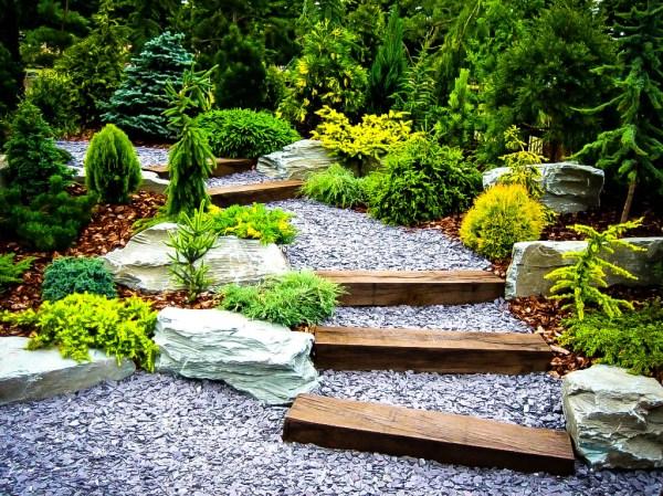 plants japanese garden