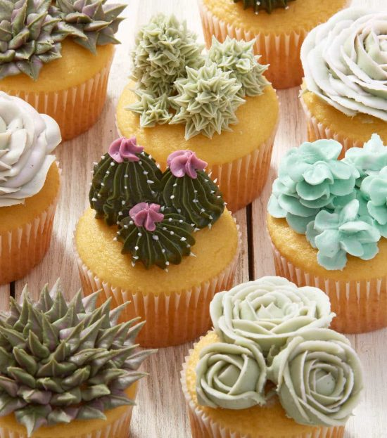 Succulent Cupcakes Tutorial Easy Diy Video Instructions