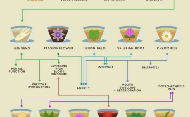 Medicinal Teas And Their Uses Charts And Recipes The Whoot