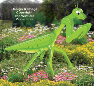 New Items  3D Giant Praying Mantis Pattern