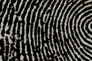 Aadhaar biometric Pixabay