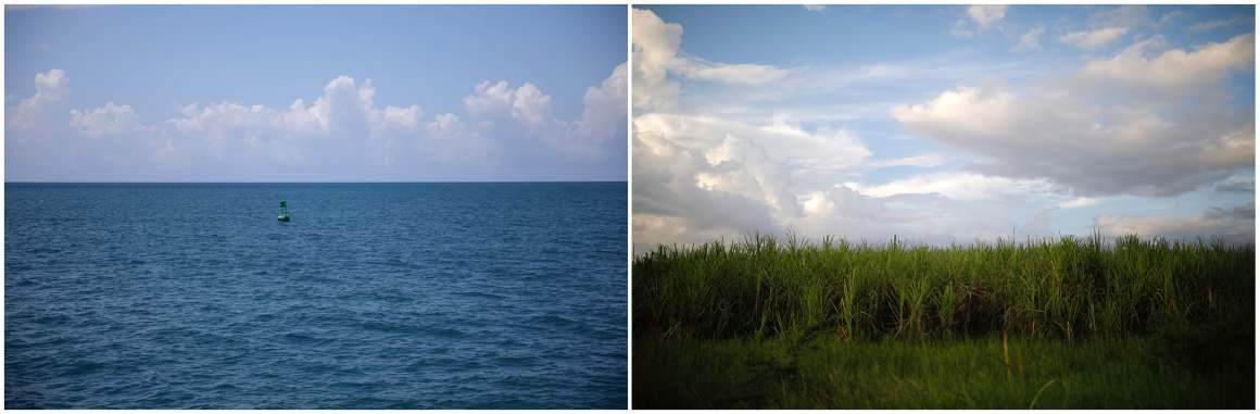A combination picture shows a buoy near the US Naval Base in Guantanamo Bay, Cuba, June 2, 2017 (L) and a sugar cane field near the city of Guantanamo, Cuba, December 7, 2017.  Credit: Reuters/Carlos Barria