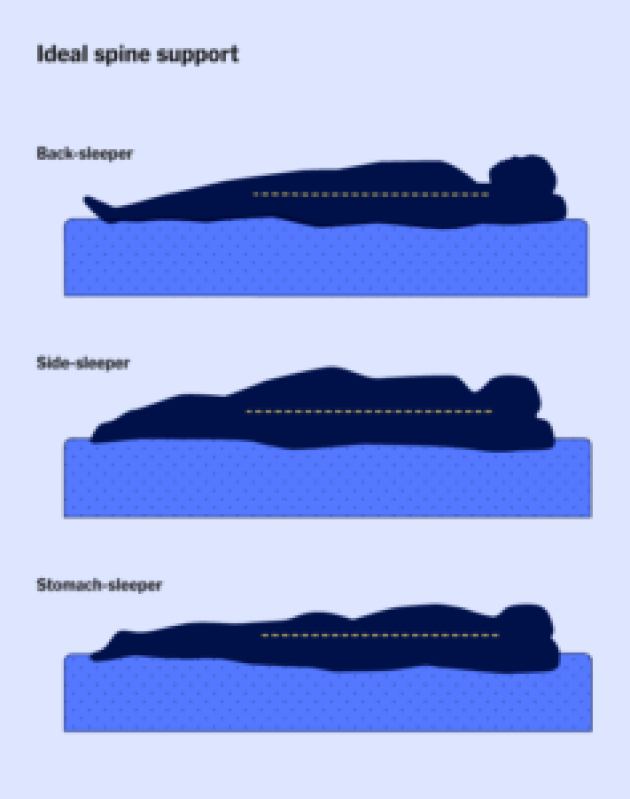A graphic depicting three people (a back sleeper, side sleeper, and stomach sleeper) with their ideal spine alignment while sleeping.