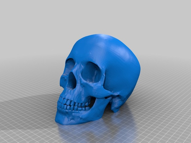 Skull By Trailogy Thingiverse