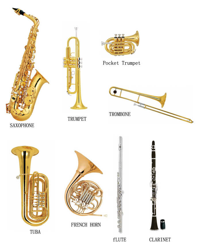 Brass and wind instruments