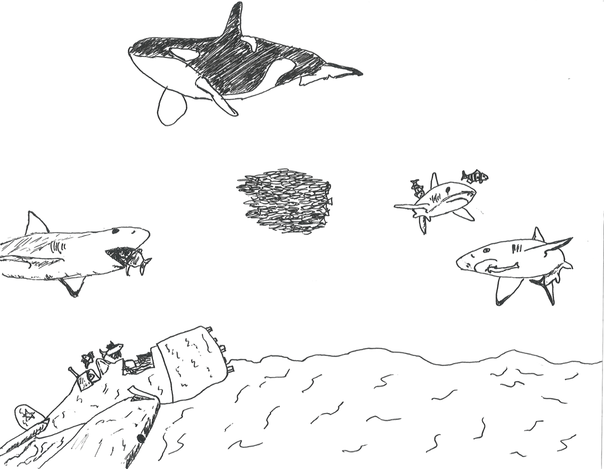 ecosystem drawing Gallery
