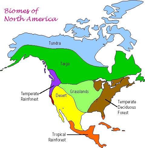 Biomes Of North America  Thinglink