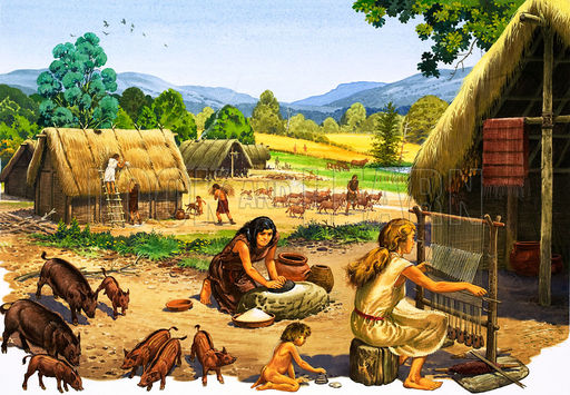 Copy of Neolithic Village