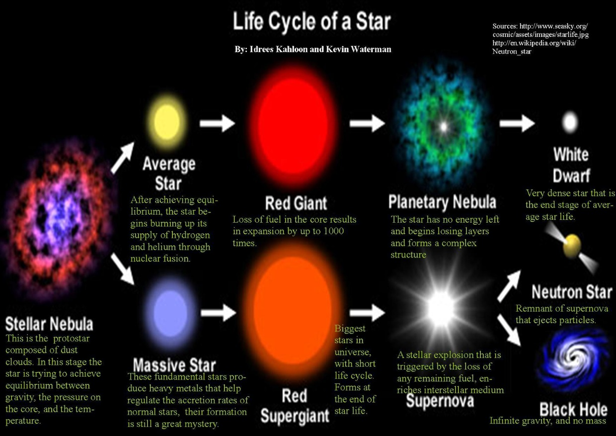 diagram of a low mass star life cycle the tongue with labels