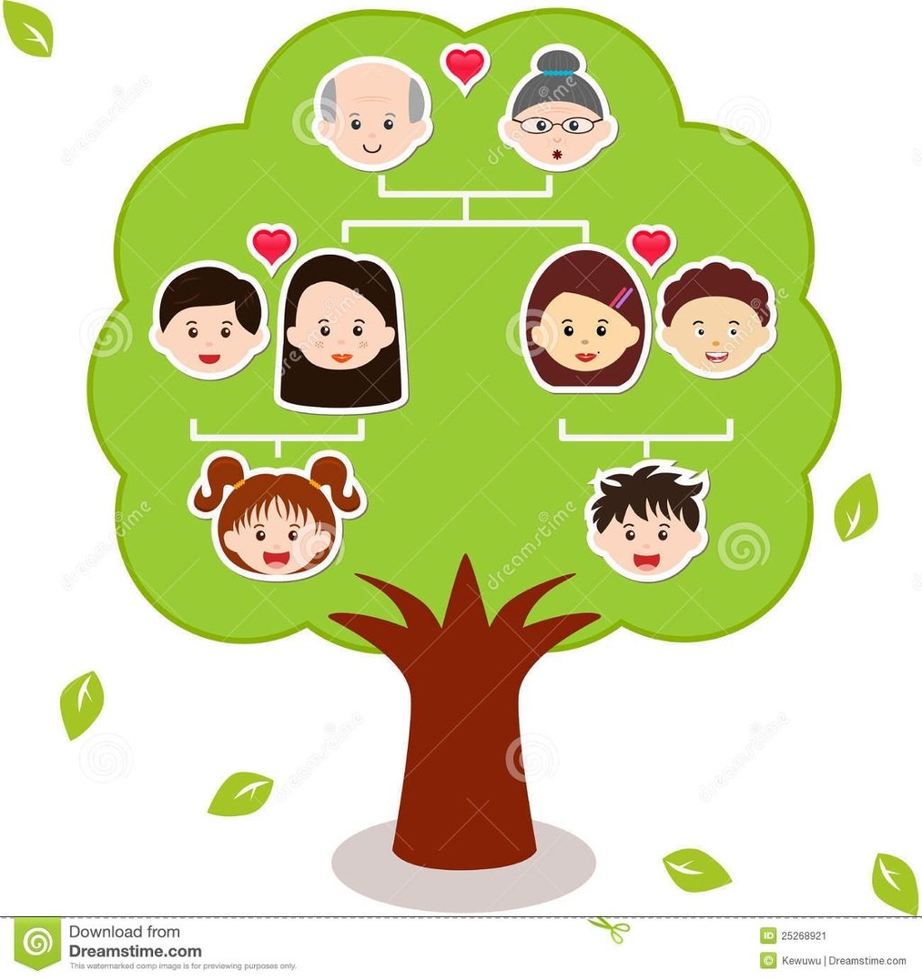 my family tree diagram horsetail plant welcome to presentation i am excited and h