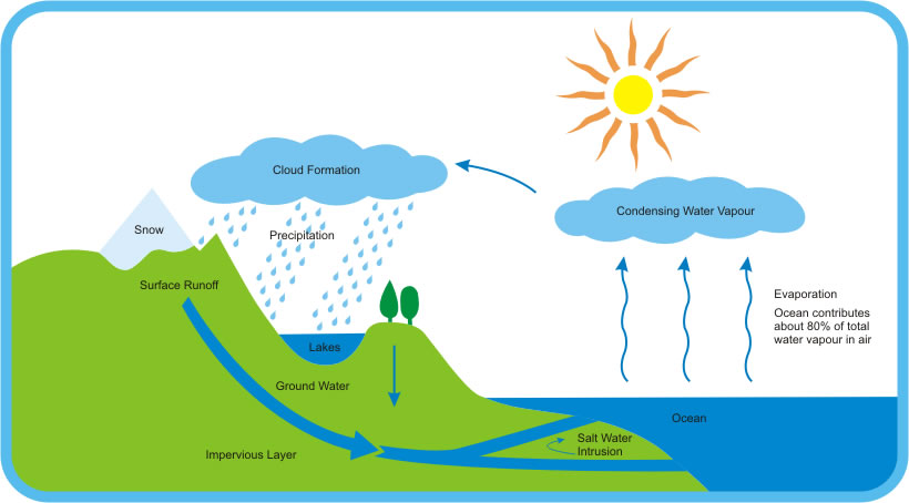 The definition of precipitation is any form of water  li