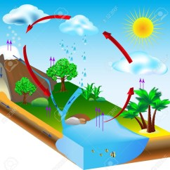 Flower Transpiration Diagram 36 Volt Aussenborder Is Where The Water On Tr