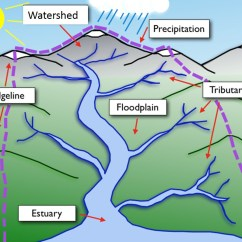 Water Cycle Diagram Worksheet To Label Employee Life What Are Watersheds?
