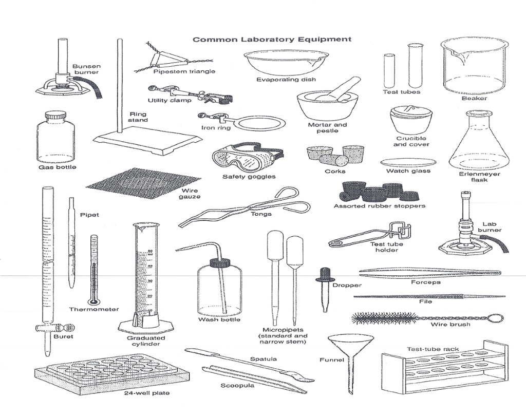 hight resolution of List safety equipment science