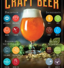 learn about craft beer craftbeer com [ 1024 x 1484 Pixel ]