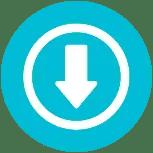 DraStic DS Emulator Free Download