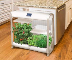 Farm Plus Hydroponic Garden