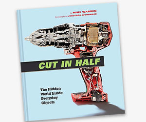 Cut In Half Book