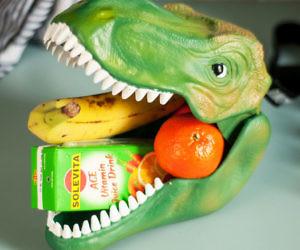 Dinosaur Head Lunchbox