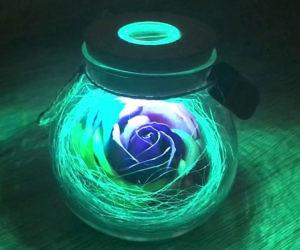Light Up Color Changing Rose Wish Bottle