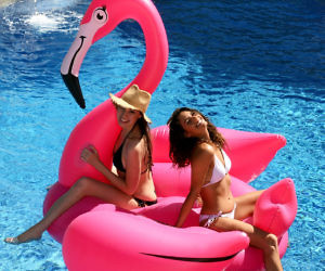 Gigantic Pink Flamingo Float